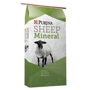 web_puirna-sheep-mineral